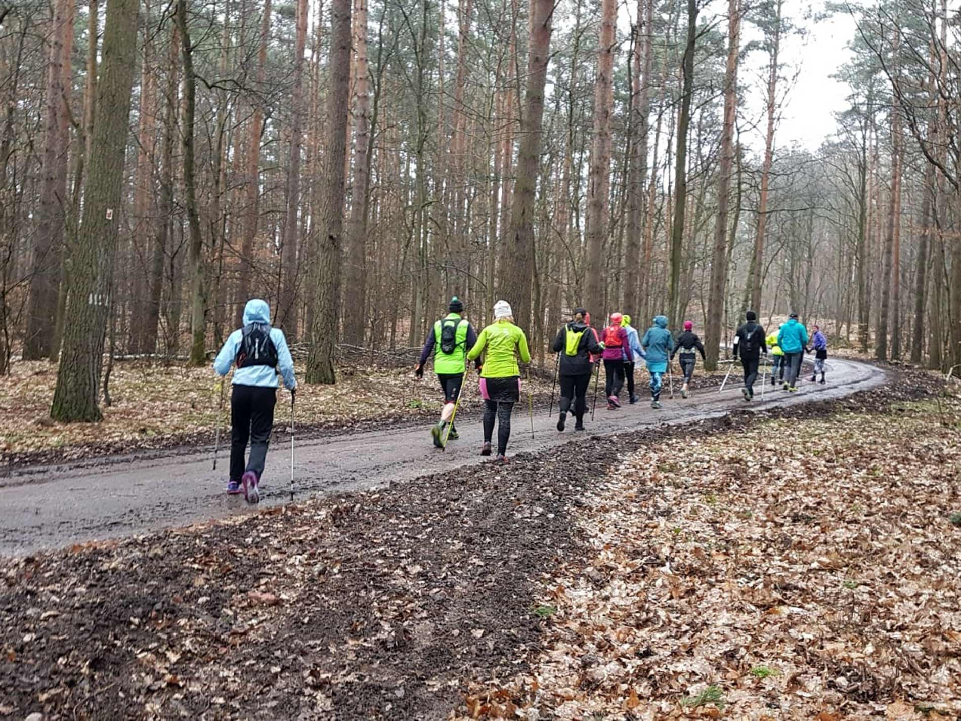 Teuto Run & Fun Walkinggruppe
